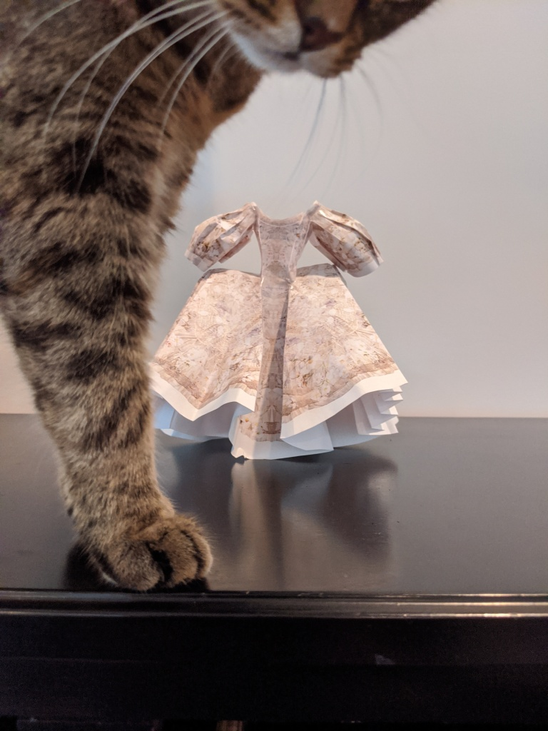 A cat hovers over a paper dress